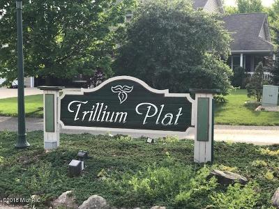 Kalamazoo County Residential Lots & Land For Sale: 1201 Trillium Circle