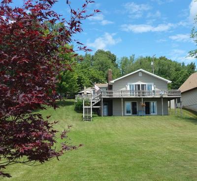 Delton MI Single Family Home For Sale: $359,900