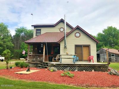Newaygo County Single Family Home For Sale: 2992 N Luce Ave