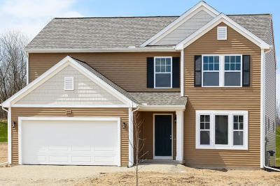 Middleville Single Family Home For Sale: 900 View Pointe Drive