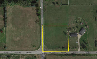 Kent County Residential Lots & Land For Sale: 92nd St. SW