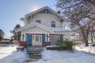 Allegan County Single Family Home For Sale: 669 W Main Street
