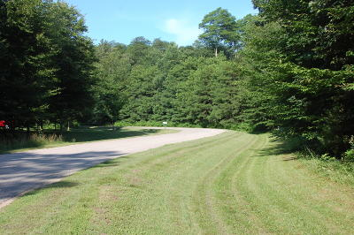 Newaygo County Residential Lots & Land For Sale: 12750 Austrian Drive