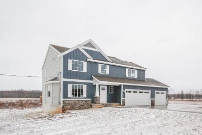 Rockford Single Family Home For Sale: 6573 11 Mile Road NE