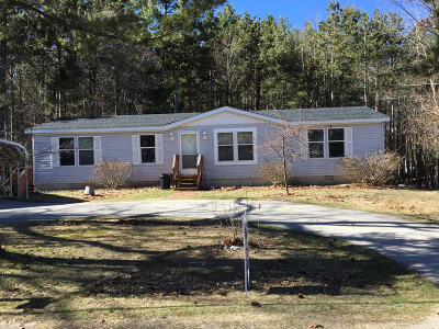Manistee County Single Family Home For Sale: 230 E Piney Road
