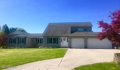 Kalamazoo County Single Family Home For Sale: 6212 E Tu Avenue