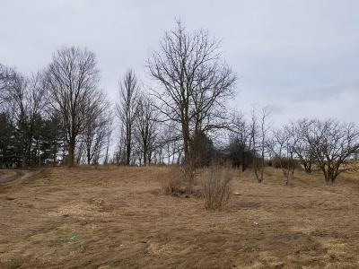 Scottville Residential Lots & Land For Sale: 436 E Us 10