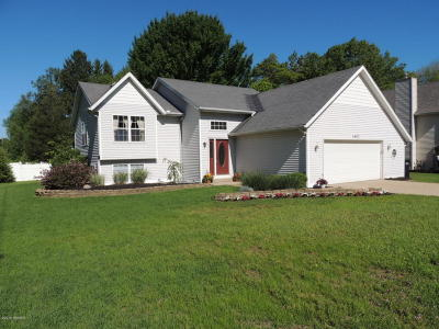 Allegan County Single Family Home For Sale: 4602 Pine Drive