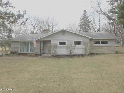 Niles Single Family Home For Sale: 3150 Portage Road