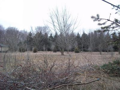 St. Joseph County Residential Lots & Land For Sale: 31407 Russell Road