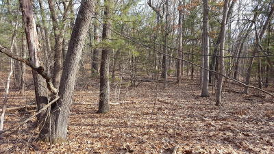 Residential Lots & Land For Sale: Lot 48 Wintergreen Road