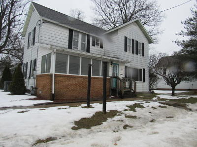 Berrien County Commercial For Sale: 1213 Oak Street