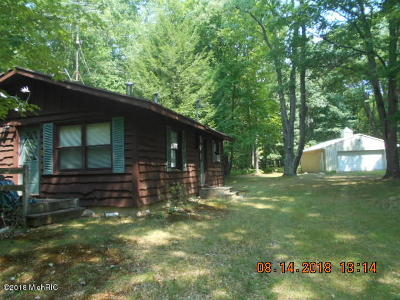 Branch Single Family Home For Sale: 9182 E Washington Road