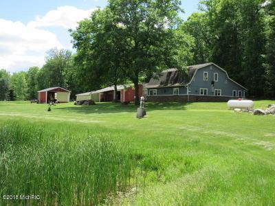 Newaygo County Single Family Home For Sale: 7622 E Washington Road