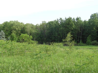 Ada Residential Lots & Land For Sale: 8159 45th Street SE