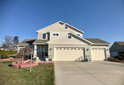 St. Joseph Single Family Home For Sale: 1595 Prairie Drive