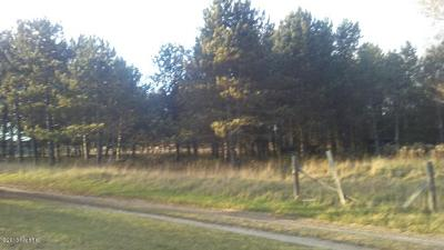 Oceana County Residential Lots & Land For Sale: 2608 132nd Avenue