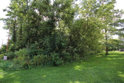 St. Joseph County Residential Lots & Land For Sale: 318 S Railroad Street