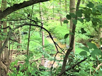 Oceana County Residential Lots & Land For Sale: Lots 7 & 8 Second Street