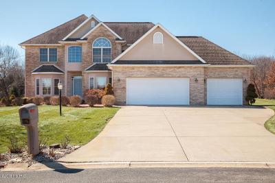 Kalamazoo Single Family Home For Sale: 6443 Bayfield Drive