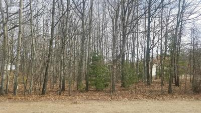 Oceana County Residential Lots & Land For Sale: Northern Lights