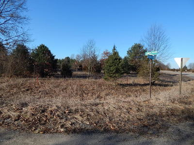 St. Joseph County Residential Lots & Land For Sale: Id 043-10 James Drive