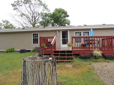 Allegan County Single Family Home For Sale: 1963 56th Street