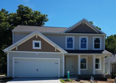 Benton Harbor Single Family Home For Sale: 611 N Cygnet Lake Drive
