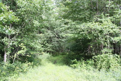 Eaton County Residential Lots & Land For Sale: 9945 Ionia Road