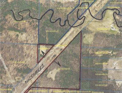Scottville Residential Lots & Land For Sale: W Dewey Road