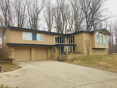 Big Rapids Single Family Home For Sale: 619 Cypress Street