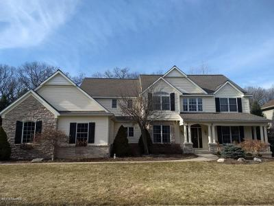 Grand Rapids Single Family Home For Sale: 2180 Hearthside Drive SE