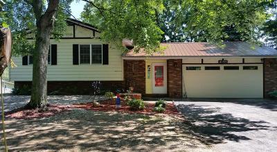 Benton Harbor Single Family Home For Sale: 4195 Pier Road