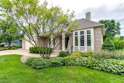 Grand Rapids Single Family Home For Sale: 880 Bradford Hollow Drive NE