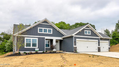 Zeeland Single Family Home For Sale: 7525 Macview Drive #2