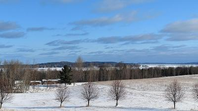 Leelanau County Residential Lots & Land For Sale: 4874 E Water View Drive #50