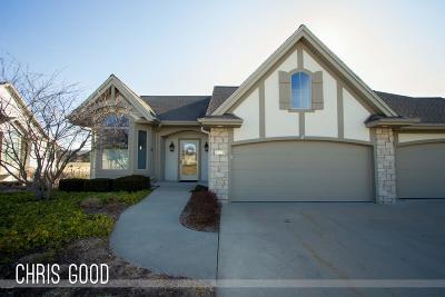 Belmont MI Condo/Townhouse For Sale: $375,000