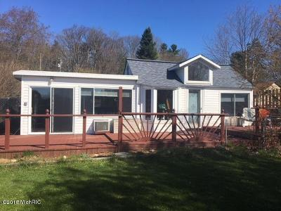 Big Rapids Single Family Home For Sale: 11496 Maple Street