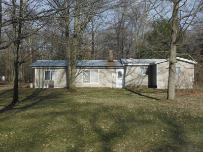 White Cloud Single Family Home For Sale: 872 S Ransom Avenue