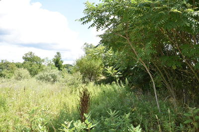 Residential Lots & Land For Sale: 525 W 44th Street