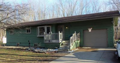 Coldwater Single Family Home Active Contingent: 533 Schaeffer Drive