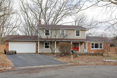 Kalamazoo Single Family Home For Sale: 2400 Ridgeview