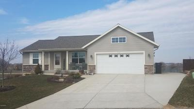 Zeeland Single Family Home For Sale: 7425 Brown Fox Street