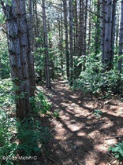 Oceana County Residential Lots & Land For Sale: W Hazel Road