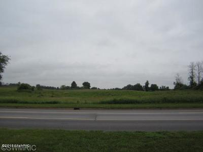 Clinton County, Gratiot County, Isabella County, Kent County, Mecosta County, Montcalm County, Muskegon County, Newaygo County, Oceana County, Ottawa County, Ionia County, Ingham County, Eaton County, Barry County, Allegan County Residential Lots & Land For Sale: 717 E Main Street