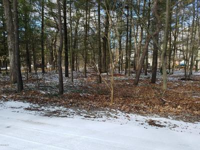 Grand Haven, Spring Lake, Ferrysburg Residential Lots & Land For Sale: 14671 Park Avenue