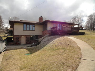 Single Family Home For Sale: 303 W Hickory Road