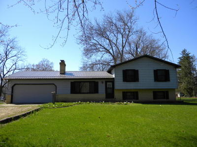Berrien County, Cass County, Van Buren County Single Family Home For Sale: 69671 S River Road