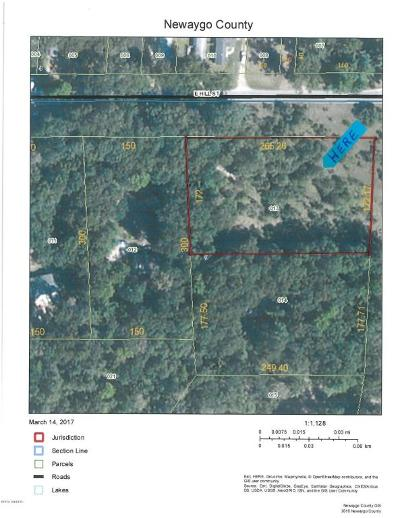 Newaygo Residential Lots & Land For Sale: 6565 Croton Hardy Drive