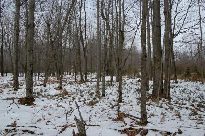 Mecosta County Residential Lots & Land For Sale: 6135 Fawn Lake Drive